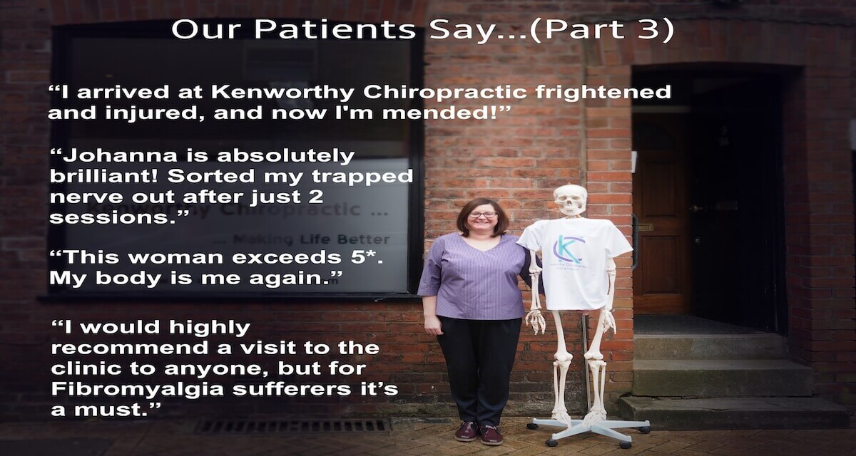Kenworthy Chiropractic Reviews 3%20copy